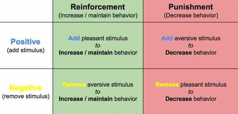 Negative Punishment: Definition & Examples